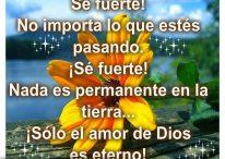 Imágenes con frases cristianas: Solo el amor de Dios es eterno