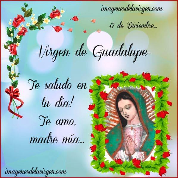 imagen virgen guadalupe